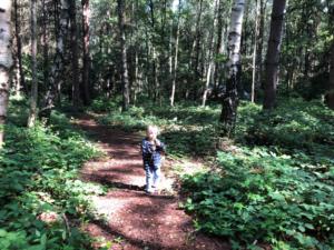 Woodland Adventure Company