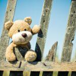 teddy bear lost